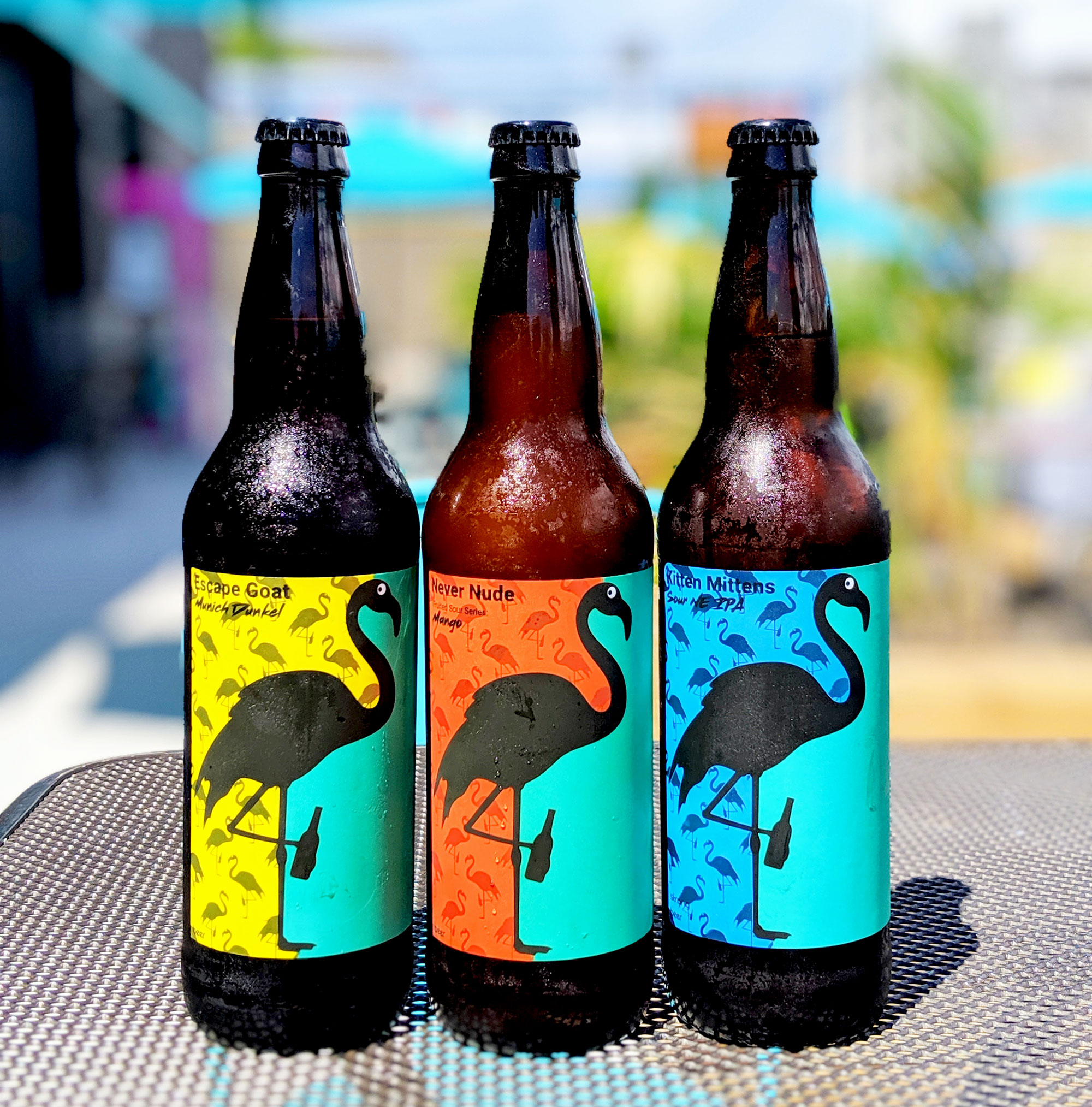 DaftBrewing-Bottles